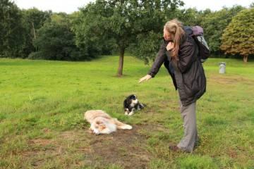 Hundetrainerin Petra trainiert die Schlafstellung in Bremen